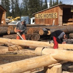 log-building-course-1703-04
