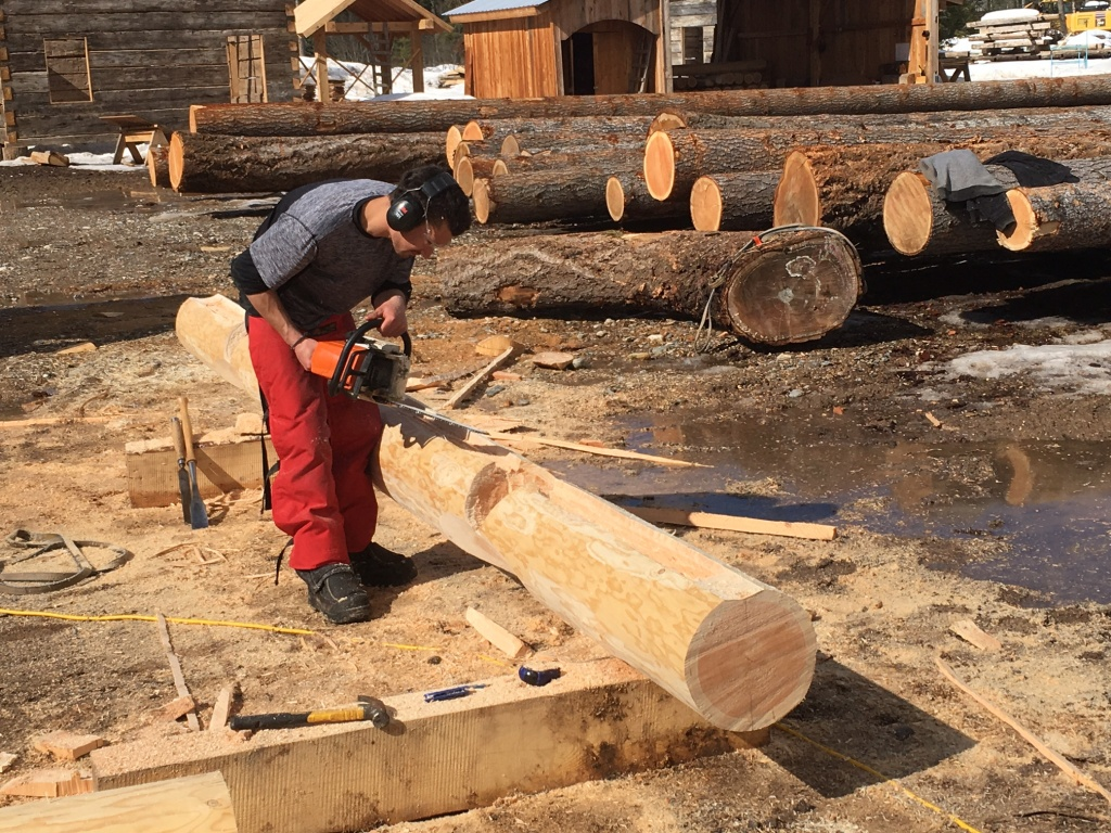 log-building-course-1703-05