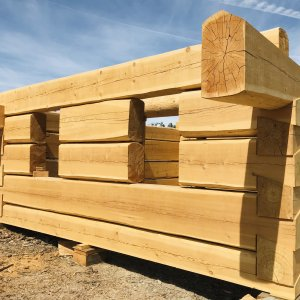 huge dovetail logs